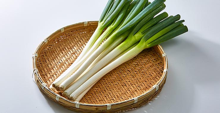 ねぎ | いばらきの農林水産物 | 茨城をたべよう 食と農のポータルサイト