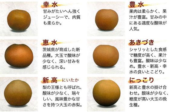 いばらき梨よくある質問 品種の特徴