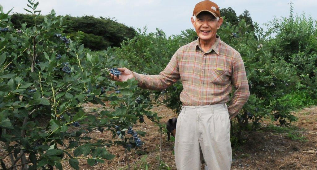高品質でおいしいブルーベリーを提供する 坂 尚武さん(かすみがうら市)