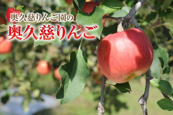 奥久慈りんご園 トップ画像