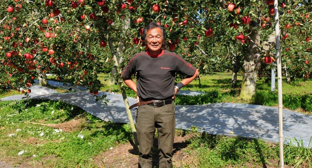樹上完熟を基本としたりんご作り 塙 正比古さん(大子町)