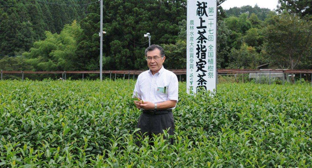 急須でいれるお茶の再興を願って! 吉成俊光さん(大子町)