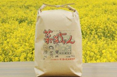 特別栽培米 菜菜ちゃん