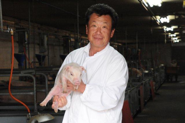 繁殖~飼育~出荷まで一貫型の養豚場へ
