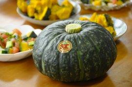 江戸崎かぼちゃ1玉