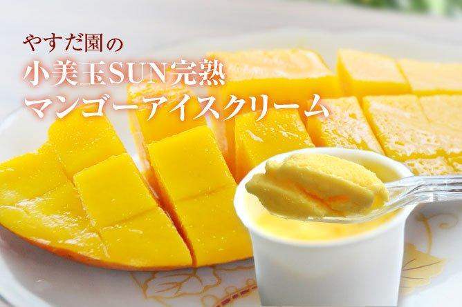 やすだ園の【小美玉SUN完熟マンゴーアイスクリーム】