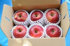 奥久慈りんご園のりんご2kg箱(約6個入り)