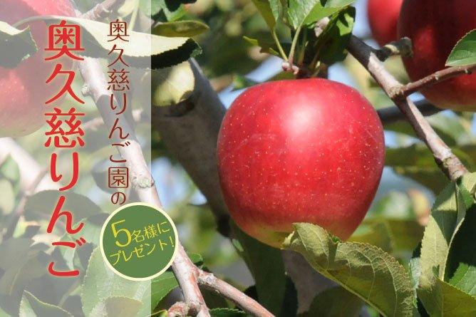 第258回プレゼント 奥久慈りんご園の【りんご】