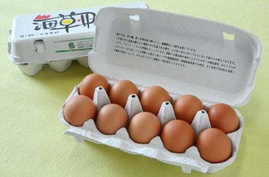 鶏卵、温泉卵 味付け玉子