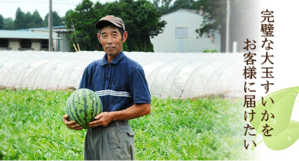 大玉すいかを作って45年の大ベテラン 大竹 克さん(阿見町)