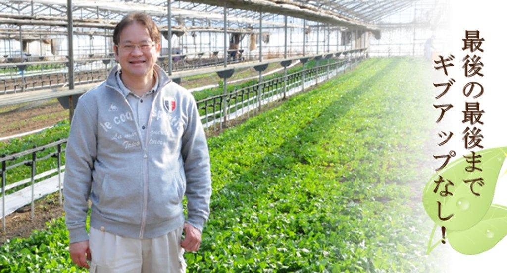 農業に可能性を見出して 木村誠さん(つくば市)