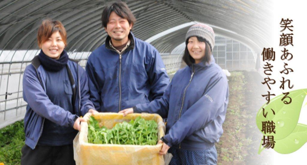 お客様に安全な野菜と幸せを提供する 細谷元成さん(笠間市)