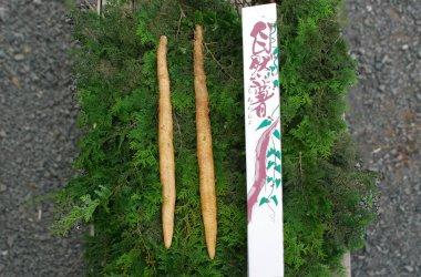 エコファーム星山 自然薯