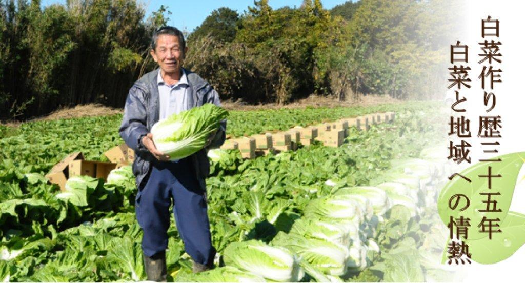 生産量日本一!八千代町の白菜部会長 小竹淳さん(八千代町)