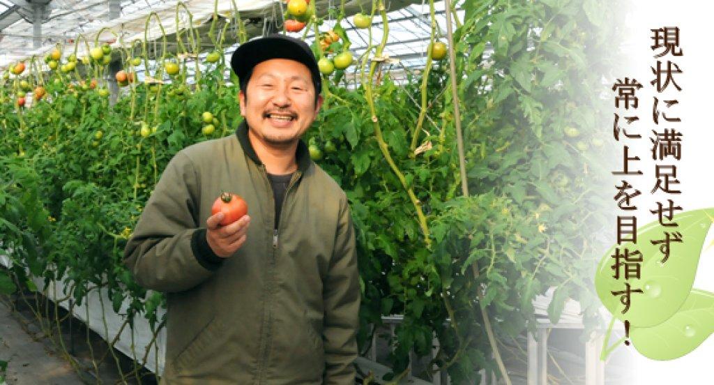 進化し続けるトマト作り 村上隼人さん(笠間市)