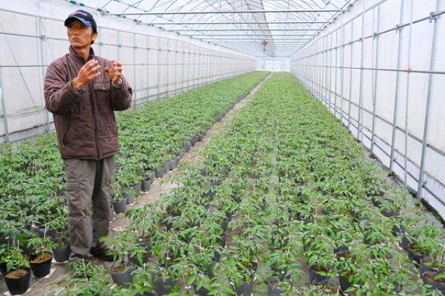 減農薬栽培1