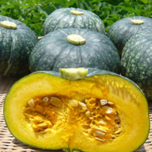 おいしい江戸崎かぼちゃを選ぶコツ