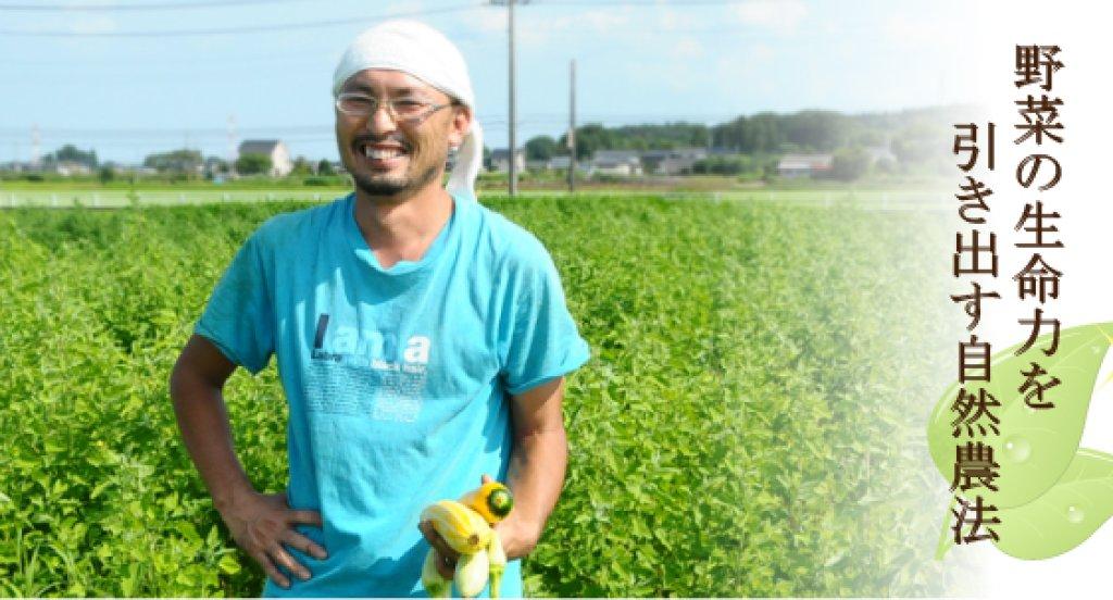 在来種を自然農法で育てる 和知健一さん(那珂市)