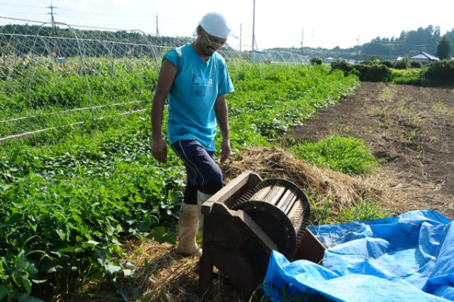 自然農法2