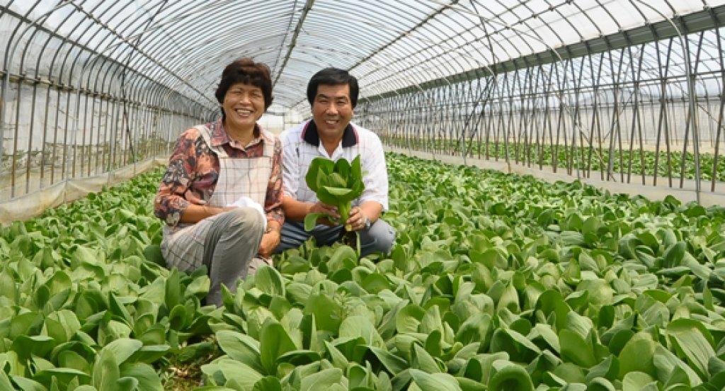 農業には国と地域を支える力がある 菅谷作衛さん(行方市)