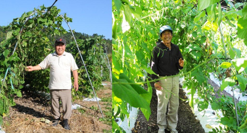 茨城にしかないブランド豆 常陸大黒生産者 鈴木澄男さん、鈴木勝さん(大子町)