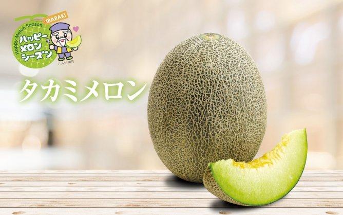 八千代町産【タカミメロン】
