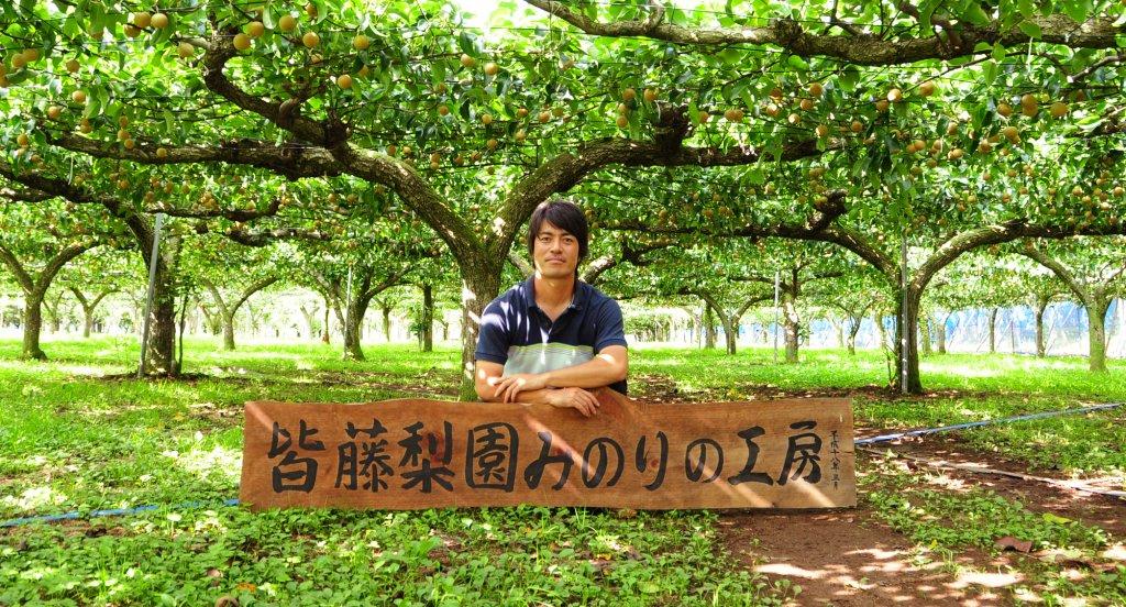 樹の健康を第一に考えた梨作り 皆藤 純一さん(小美玉市)