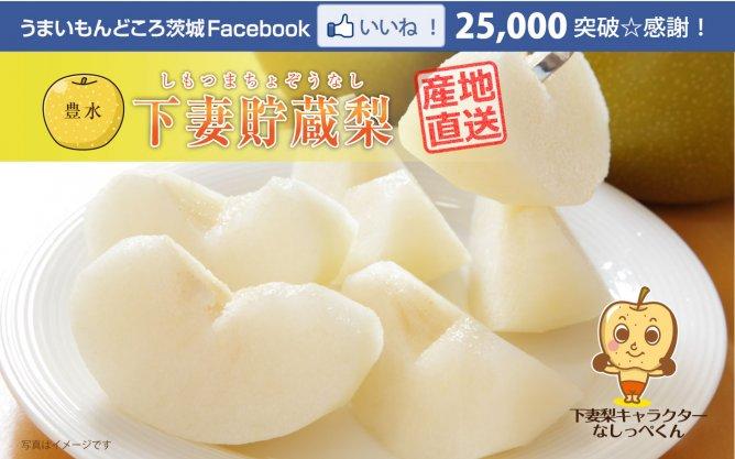 Facebookいいね!25,000突破☆感謝記念プレゼント企画 冬も美味しい「豊水梨」が食べられる!【下妻貯蔵梨】