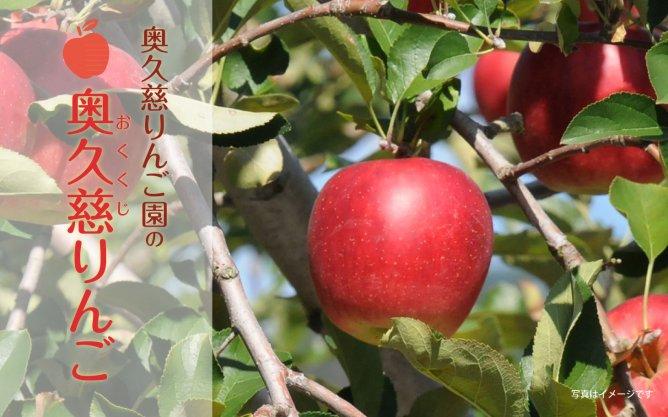 第296回プレゼント 奥久慈りんご園の【奥久慈りんご】