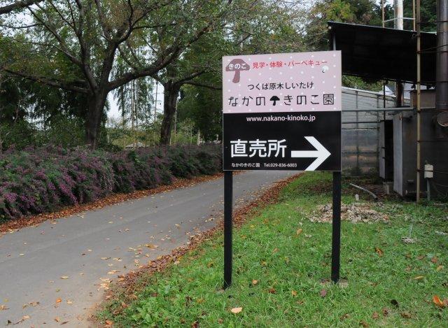 なかのきのこ園入口