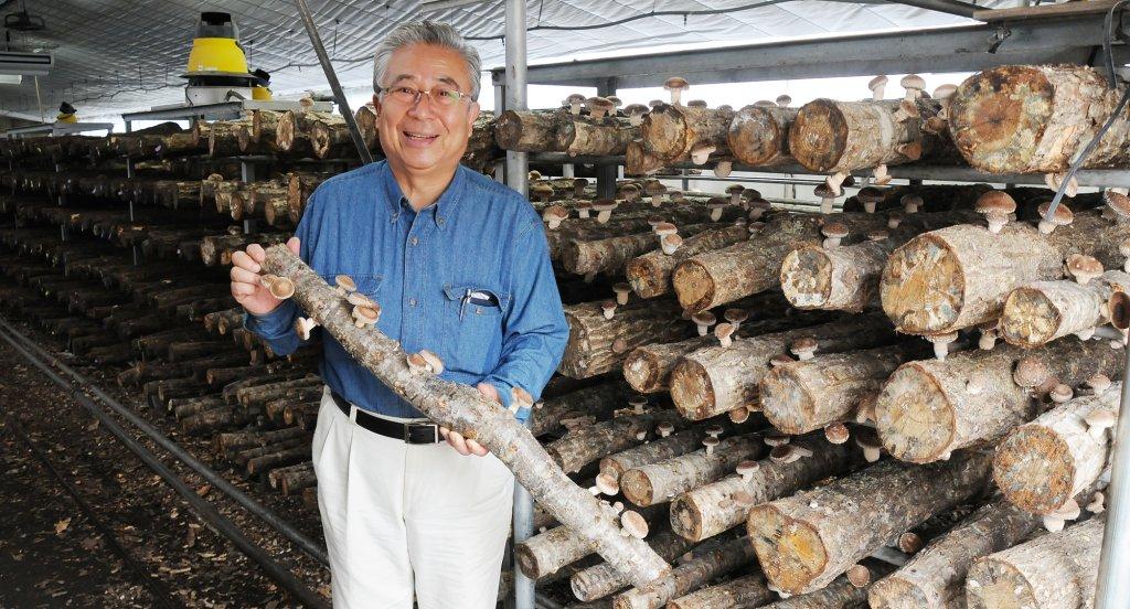原木しいたけ栽培の先駆者 飯泉 孝司さん(つくば市)