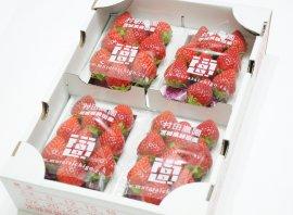 村田農園のイチゴ1箱(4パック入り)