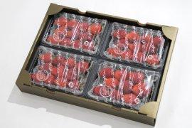 ハートフルファーム土の香の【いちご】4パック入り1箱