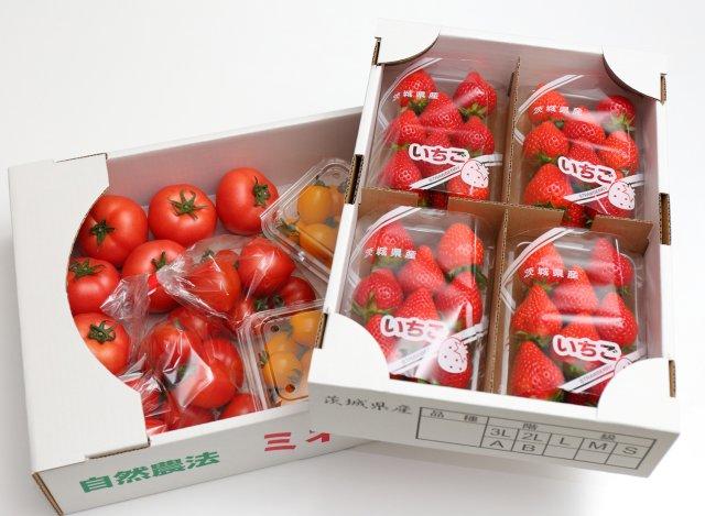 柳田農園のトマトといちご