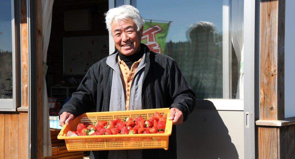 茨城いちごグランプリ 大賞受賞! 谷中 正一さん(笠間市)