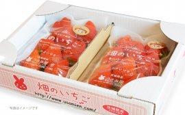うさみ園のイチゴ(やよいひめ)2パック入1箱