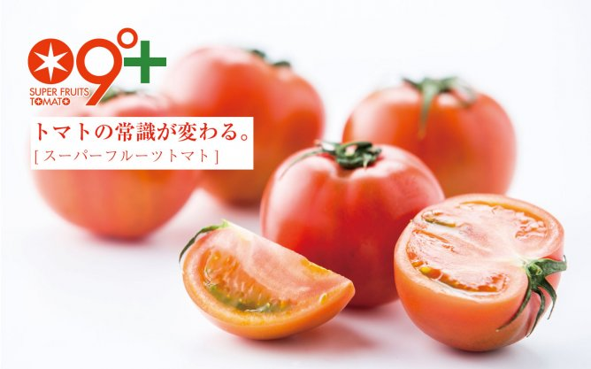 第55回茨城をたべよう連動プレゼント企画 大玉で高糖度!【スーパーフルーツトマト】