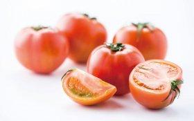 大玉で高糖度!スーパーフルーツトマト