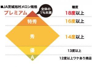 JA茨城旭村 メロンの規格表