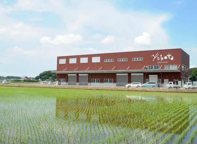 横田農場 乾燥・貯蔵施設