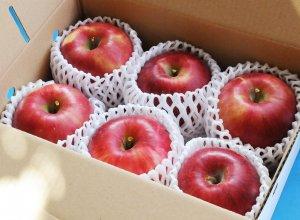 奥久慈りんご