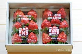 村田農園のイチゴ2パックイメージ
