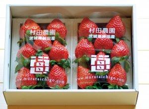 村田さん家のイチゴ