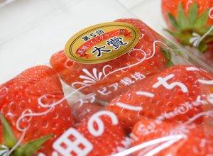 第5回茨城いちごグランプリで「大賞」を受賞