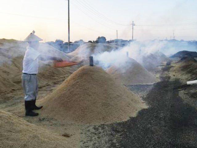籾殻くん炭作り