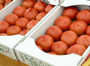 きらいち筑西店 トマト