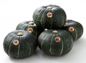 国内初のGI登録!日本が認めた最高品質「江戸崎かぼちゃ」