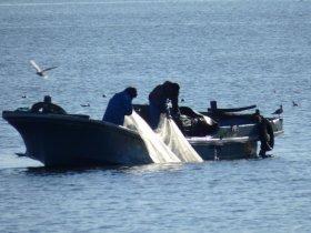 トロール漁業