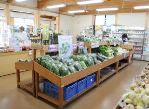 やすらぎの里しもつま 農産物千代川直売所 店内