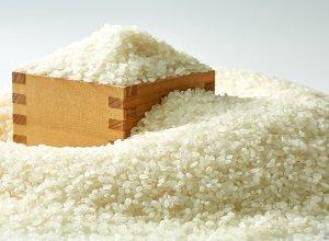 いばらきの米イメージ